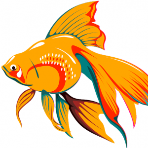 Aquarium Tropical Fish